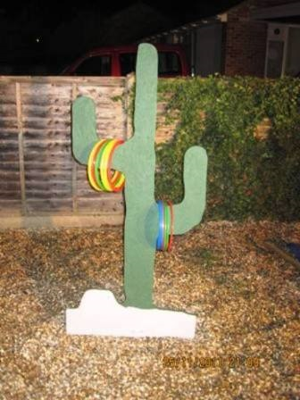 Cactus Hoopla Throw  Throw the hoops over the Cactus Arms